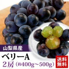 送料無料 フルーツ ぶどう ベリーA 2房 1房400-500g ブドウ 葡萄(gc)