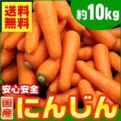 【送料無料】生活応援!国産 人参 約10kg【にんじん】【ニンジン】(gc)