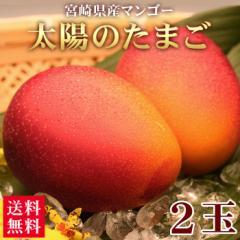 マンゴー 送料無料 宮崎県産 太陽のタマゴ 3L〜4L 2玉 ギフト 国産(gc)