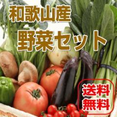 和歌山からたっぷり13種以上旬の野菜を詰め合わせました【送料無料】野菜セット
