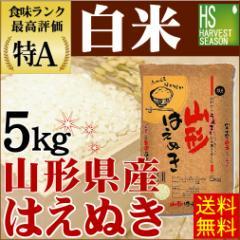 【送料無料】 28年産白米山形はえぬき5kg[お米/ご飯/ハーベストシーズン]