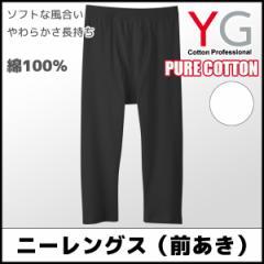 YG ワイジー 綿100% ニーレングス 前あき Mサイズ Lサイズ LLサイズ グンゼ GUNZE ステテコ すててこ YV0007