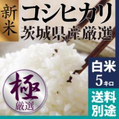新米 コシヒカリ 白米 5kg 28年新米茨城県産 美味しいお米探しを卒業できます!品質保証