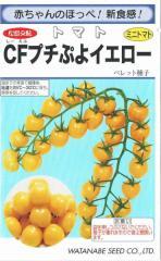 渡辺採種場 ミニトマト CFプチぷよイエロー ペレット種子約100粒