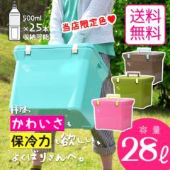 【送料無料】【当店限定色】クーラーボックス 小型 クーラーバッグ 日本製【ナチュールクーラー28L】保冷バッグ おしゃれ かわいい