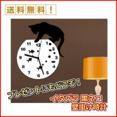 黒猫 の 掛け時計  アンティーク 風 インテリア  水槽 の 金魚 を覗き込む 猫
