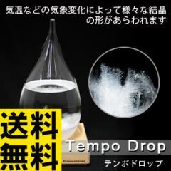 送料無料★即納★テンポドロップ ストームグラス tp−01【天気によって結晶が変化する不思議なオブジェ/perrocaliente tempo drop】