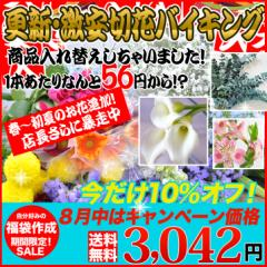 組合せ4096通り!期間限定ゲリラセール◆切り花バイキング/組み合わせ自由!16種類のお花から自分の好きなお花で福袋