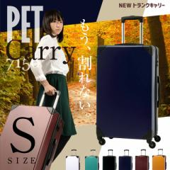 キャリーケース キャリーバッグ スーツケース 機内持ち込み Sサイズ PET7156 小型 トランクケース かわいい TSAロック 保証付 送料無料