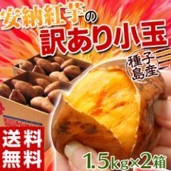 《送料無料》【安納芋】種子島産 「安納紅芋」 小玉 約1.5キロ×2箱 合計3キロ ○