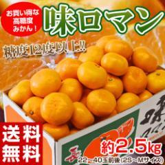 《送料無料》みかん 【糖度12度以上】 長崎県産みかん 『味ロマン』 約2.5kg (2S〜M) ※常温 ○