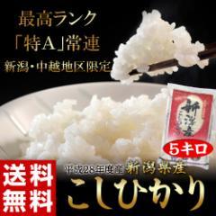 《送料無料》【平成28年度・新米】新潟県産『こし...