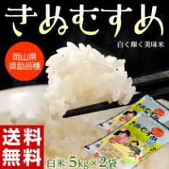 《送料無料》岡山県産米 「きぬむすめ」 白米 10kg(5kg×2袋) ※常温・産直 ○