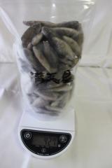 急速バラ冷凍フナ M(姉金)サイズ 400gパック 大型熱帯魚の飼育時の金魚の代替として 冷凍餌の餌付け入門品として