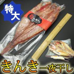 【特大・3Lサイズ以上】旬な魚を一夜干し!高級魚キンキ(380g〜)《※冷凍便》