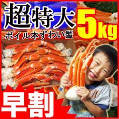 【年末早割!2000円OFF】ずわい蟹5kg 超特大 身入り抜群♪3〜6Lサイズ ボイル済み 送料無料《※冷凍便》_森源商店
