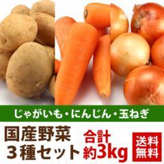 送料無料 国産 野菜3種 合計約3kgセット (じゃがいも・にんじん・たまねぎ) 日本産 北海道産 野菜セット たっぷり 家庭用 3キロ