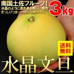 【送料無料】透き通る美しさ!はじける果汁!南国土佐のフルーツ「水晶文旦」約3kg【文旦】【柑橘】【フルーツ】