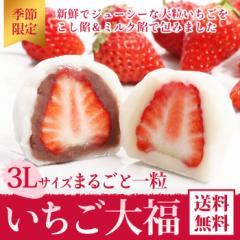 【送料無料】【季節限定】紅ほっぺ いちご大福(こし餡・ミルク餡) 6個入り【苺大福】