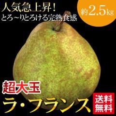 送料無料 フルーツ 洋梨 ラ・フランス 約2.5kg 5〜8玉 西洋梨 秋の味覚(gn)