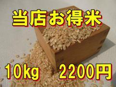 【精白米】当店お得米10kg/規格外商品/訳あり...
