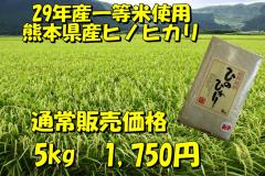 一等米使用!新米29年産九州熊本県産ヒノヒカリ【5kg】/ひのひかり/白米/くまもとのお米