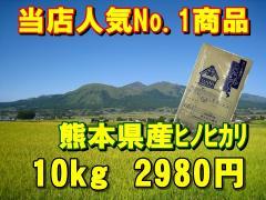 【当店一番人気】28年産九州熊本県産ヒノヒカリ【10kg】/ひのひかり/くまもとのお米