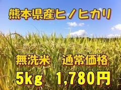 【無洗米】新米28年産九州熊本県産無洗米ヒノヒカリ【5kg】/ひのひかり/無洗米