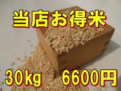 【精白米】当店お得米30kg/規格外商品/訳あり商...