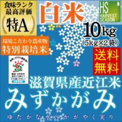 【送料無料】28年産 白米特別栽培米滋賀県産みずかがみ10kg(5kg×2袋)【お米/ハーベストシーズン】