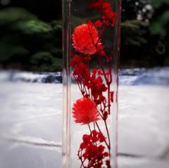 ハーバリウム赤200ml 花ギフト ハーバリウム ドライフラワー ブリザーブドフラワー 長持ちOK!