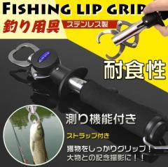 フィッシュグリップ フィッシュキャッチャー 魚掴み器 計測 重量 長さ スケール付き 釣り 軽量 ステンレス製 釣り用具 アウトドア ad118