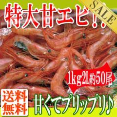 プリプリの冷凍甘えび1kg(2L約50尾)/えび/エビ/甘エビ/甘海老/送料無料/冷凍A