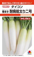 タキイ種苗 ダイコン 春まき耐病総太り二号 4ml