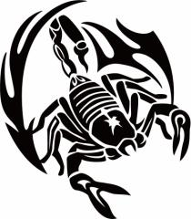 カッティングステッカー 車 バイク カッコイイ 目立つ 【スコーピオン サソリ(蠍) トライバル ・11(右向き) サイズL】【メール便】