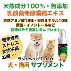 犬 猫 ペット用 サプリメント 乳酸菌 酪酸 発酵食品 天然成分100% 無添加 アミノ酸 ミネラル クレンズフード 国産 ラクトペットDR10