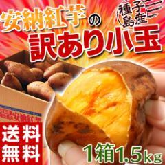 《送料無料》種子島産 「安納紅芋」 小玉 約1.5キロ※3箱買ったら1箱増量! 安納芋 訳あり小玉 ※常温 ○