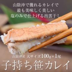 山陰沖産 子持ち笹カレイ 大サイズ 100g×1尾 ※冷凍 ○