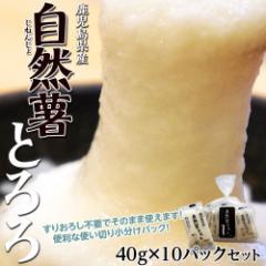 鹿児島県産 『自然薯(じねんじょ)とろろ』 40g×10パックセット ※冷凍 【冷凍同梱可能】○