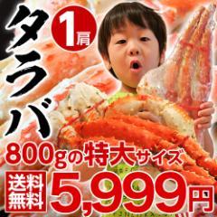 ≪送料無料≫「特大ボイルタラバ蟹」ロシア産 1肩 約800g(2人前相当)  ※冷凍  ☆