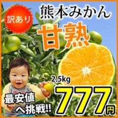 最大購入で1kg辺り194円!訳あり極早生 「甘熟」みかん2.5kg 旨味が凝縮!熊本県産【2セット購入で送料無料 3セット以降はおまけ付】