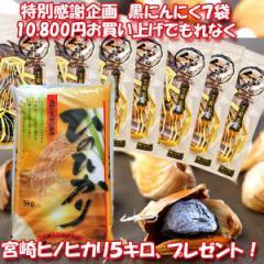 九州 宮崎産 もみきの黒ニンニク くろまる31片入7袋&新米コシヒカリ5キロ(数量限定品)