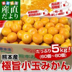 送料無料 熊本県より産地直送 JA熊本市 夢未来 極旨小玉みかん 5キロ(60個から80個) 産直だより