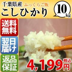 千葉県 1等米 白米 こしひかり 10kg 平成28年産 ...