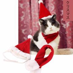 メール便送料無料ドッグ ウェア 秋 冬 エアバルーン クリスマス 帽子 マフラー サンタ コスプレ ペット服 ネコ 服 小型犬