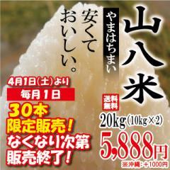 当店人気No.1 山八米 20kg(10kg×2)※沖縄は別途1000円