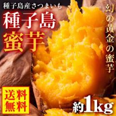 送料無料 鹿児島県 種子島産 蜜芋 約1kg 安納芋 原種 さつまいも サツマイモ