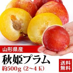 送料無料 フルーツ 秋姫プラム 約500g 2〜4玉  プラム すもも 果物(gc)