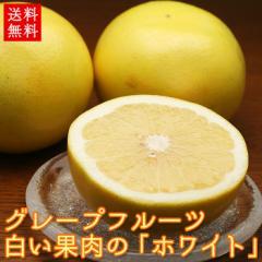 送料無料 グレープフルーツ ホワイト 10玉 フルーツ(gn)