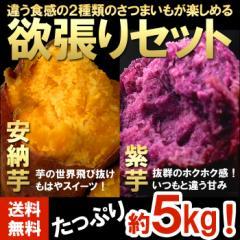 【送料無料】【訳あり】安納芋&紫芋セット 約5kg【さつまいも】 (gn)